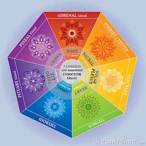 7-chakras-color-chart-mandalas-endocrine-glands-29503126