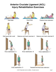 acl exercises