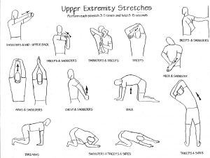upper-body-stretches