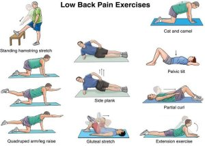physiotherapy_exercises_for_low_back_pain_by_cmc_mohali-d7vmpq3